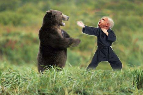 mccain-vs-bear.jpg